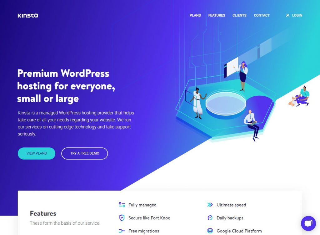 Kinsta Wordpress Web Host